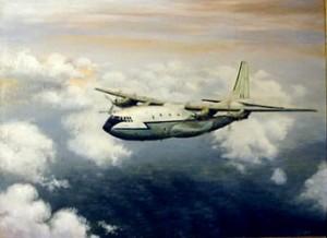 The Last Belfast (RAF Brize Norton) by Mai Griffin